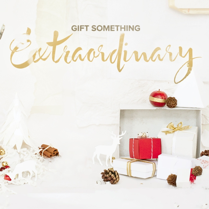 Holiday Gifting asset for social media